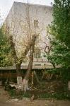 Двор храма